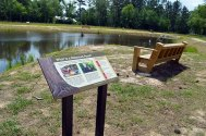 Pond Sitting Area