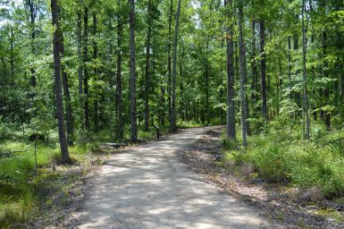 Entrance to Trail